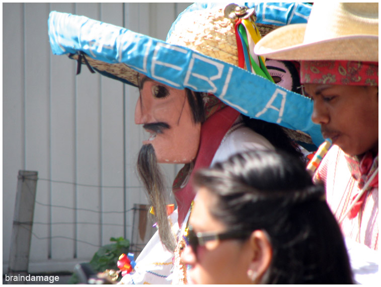 Sombrerudos Puebla